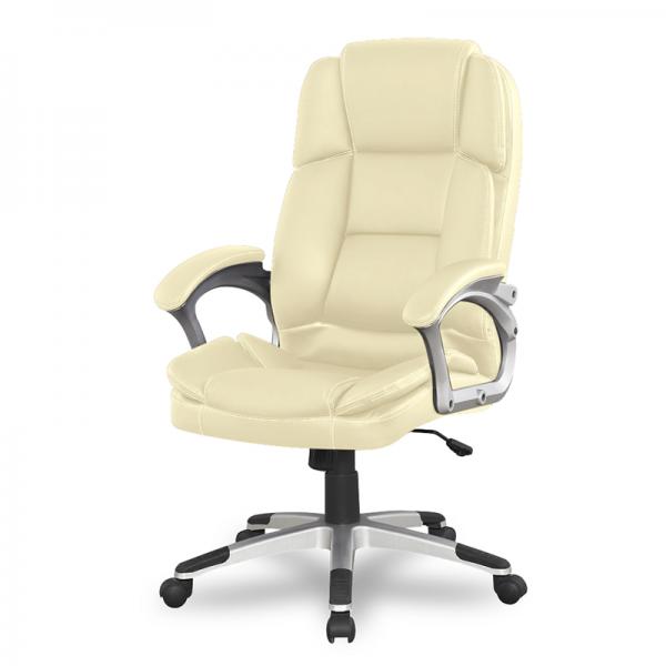 Кресло для руководителя College BX-3323 Beige