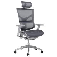 Эргономичное компьютерное кресло Expert Sail SL-01
